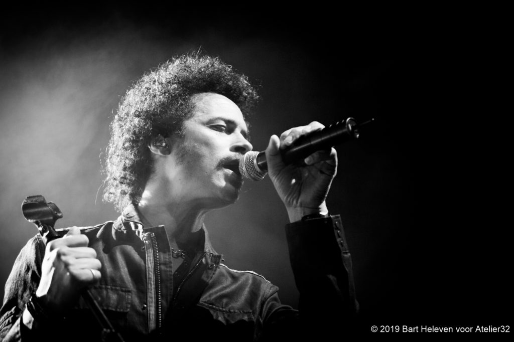 Eagle-Eye Cherry - Het Depot